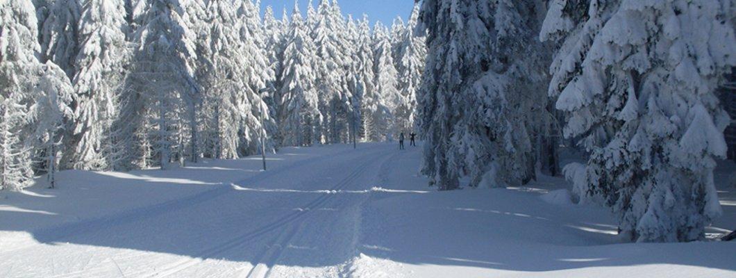 Skigebiete vor der Haustür